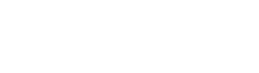 NEW PRODUCT & DEVELOPMENT SERVISE